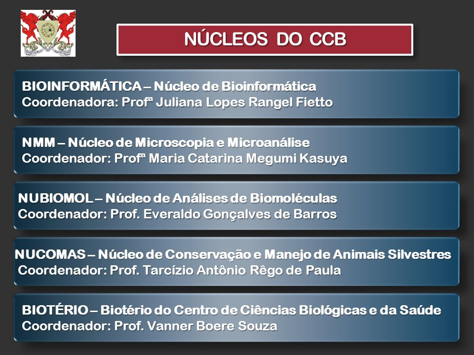 NÚCLEOS DO CCB BIOINFORMÁTICA – Núcleo de Bioinformática