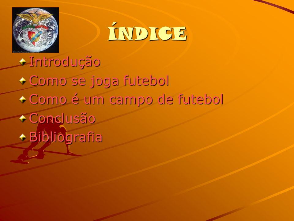 ÍNDICE Introdução Como se joga futebol Como é um campo de futebol