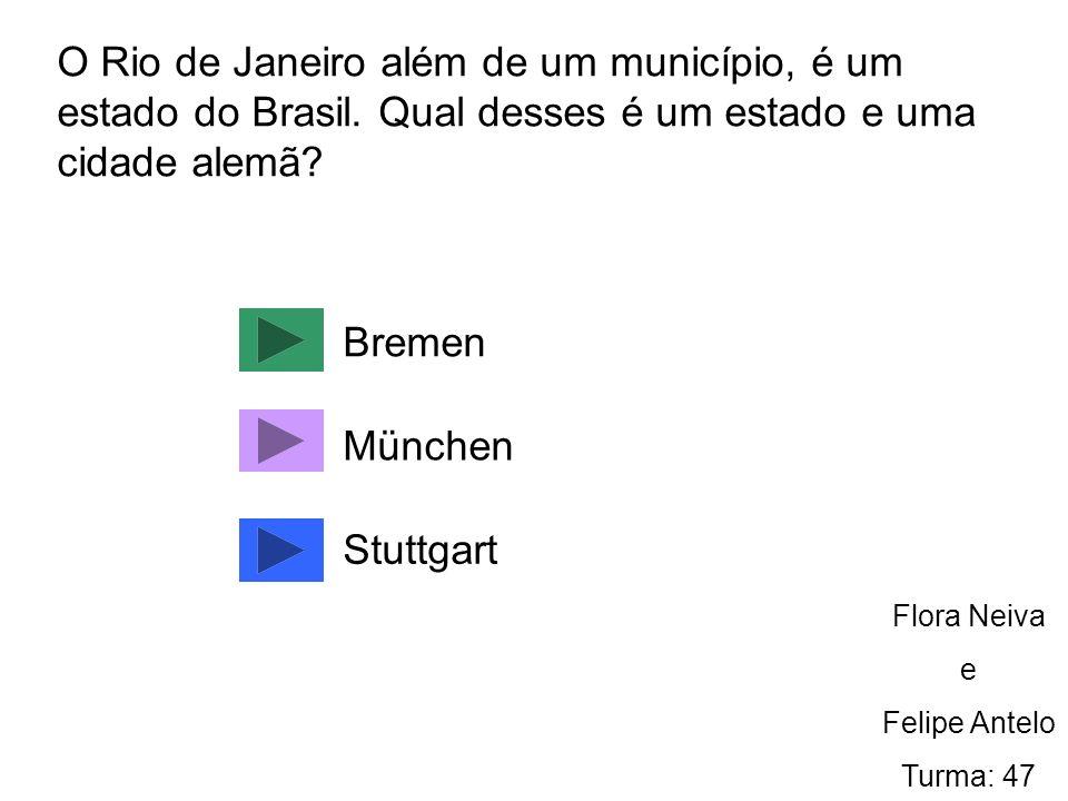 O Rio de Janeiro além de um município, é um estado do Brasil