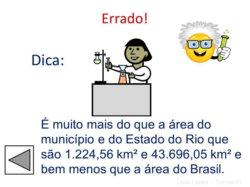Errado! Dica: É muito mais do que a área do município e do Estado do Rio que são 1.224,56 km² e 43.696,05 km² e bem menos que a área do Brasil.
