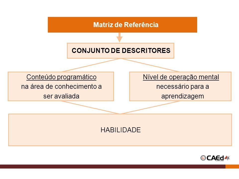 CONJUNTO DE DESCRITORES