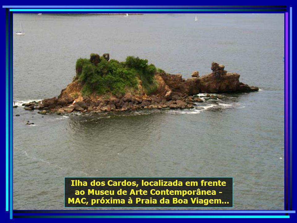 P0012346 - NITERÓI - ILHA DOS CARDOS-700