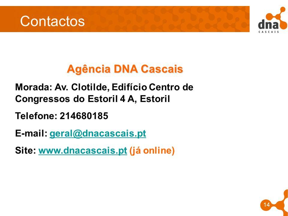 Contactos Agência DNA Cascais
