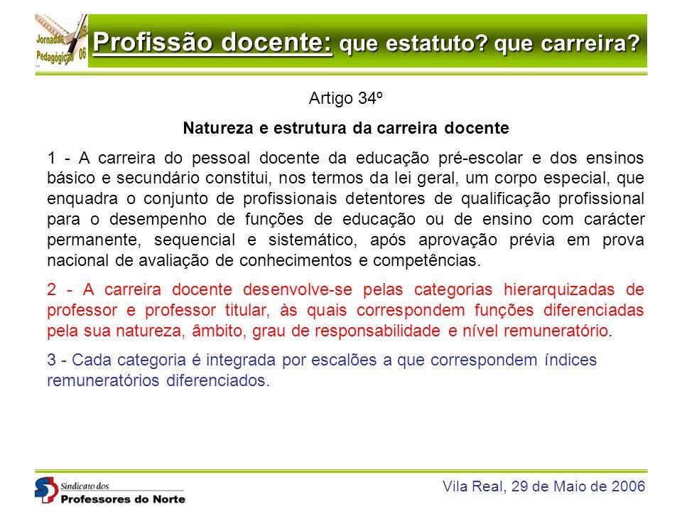 Natureza e estrutura da carreira docente