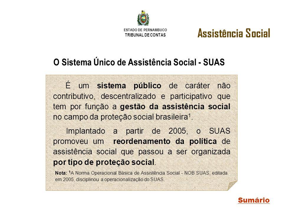 O Sistema Único de Assistência Social - SUAS