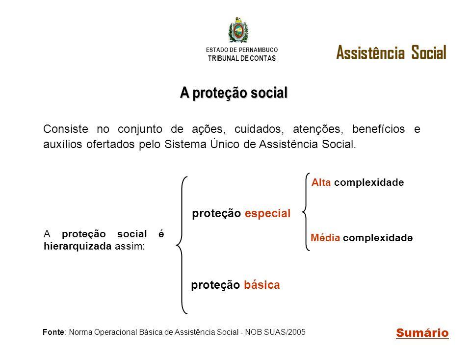 Fonte: Norma Operacional Básica de Assistência Social - NOB SUAS/2005