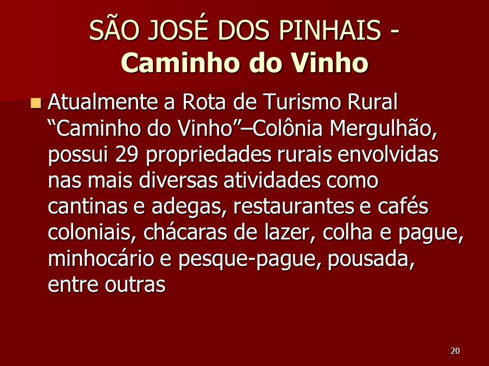 SÃO JOSÉ DOS PINHAIS - Caminho do Vinho