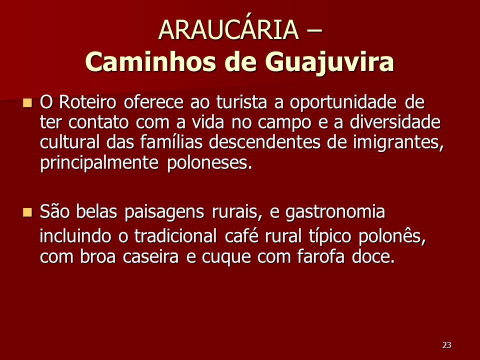 ARAUCÁRIA – Caminhos de Guajuvira