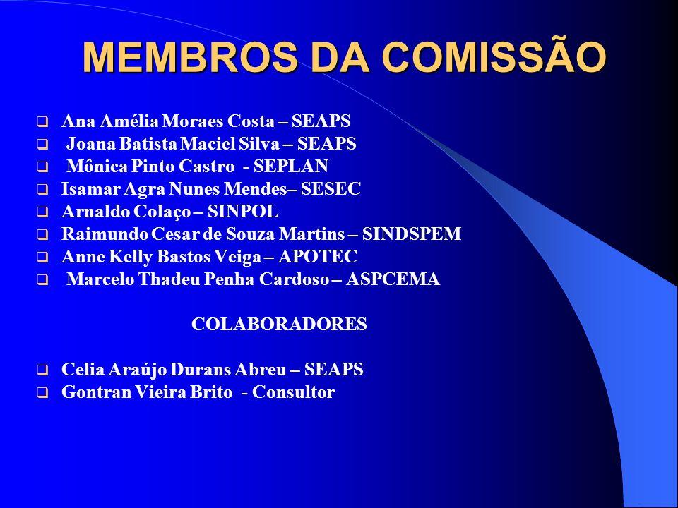 MEMBROS DA COMISSÃO Ana Amélia Moraes Costa – SEAPS