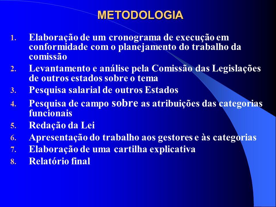 METODOLOGIA Elaboração de um cronograma de execução em conformidade com o planejamento do trabalho da comissão.
