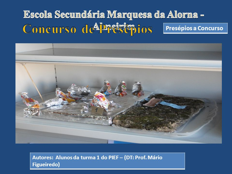 Escola Secundária Marquesa da Alorna -Almeirim