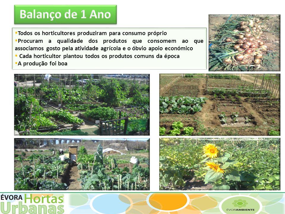 Balanço de 1 Ano Todos os horticultores produziram para consumo próprio.