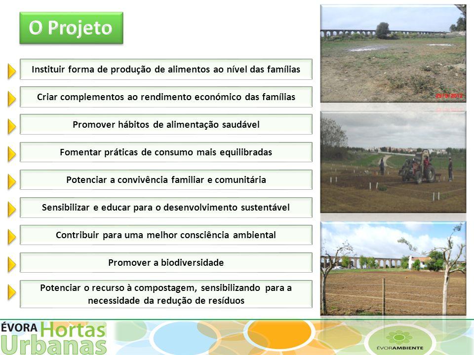 O Projeto Instituir forma de produção de alimentos ao nível das famílias. Criar complementos ao rendimento económico das famílias.