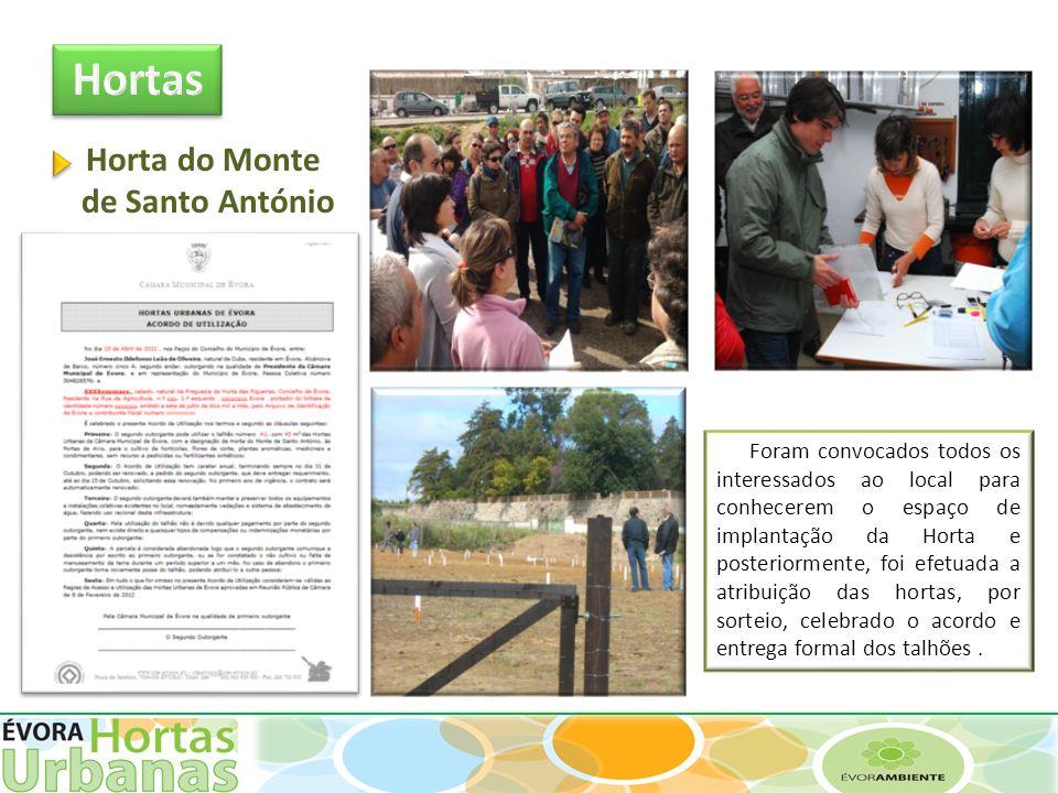 Hortas Horta do Monte de Santo António.