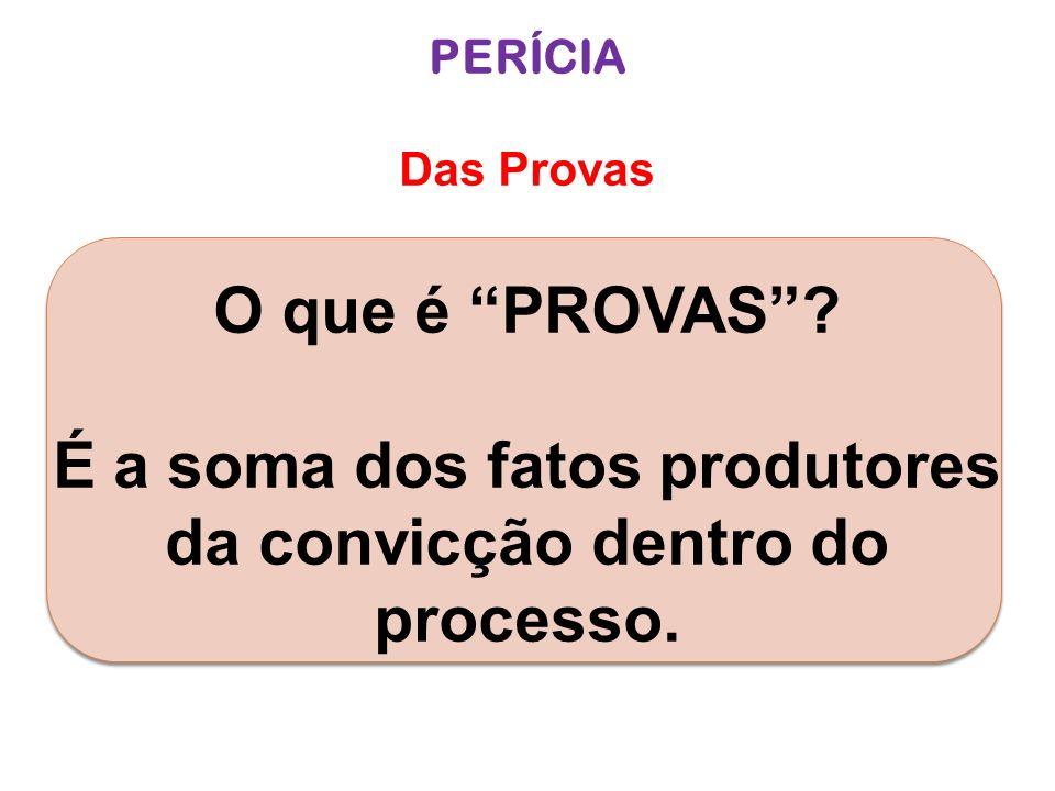 É a soma dos fatos produtores da convicção dentro do processo.