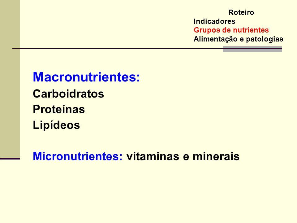 Macronutrientes: Carboidratos Proteínas Lipídeos