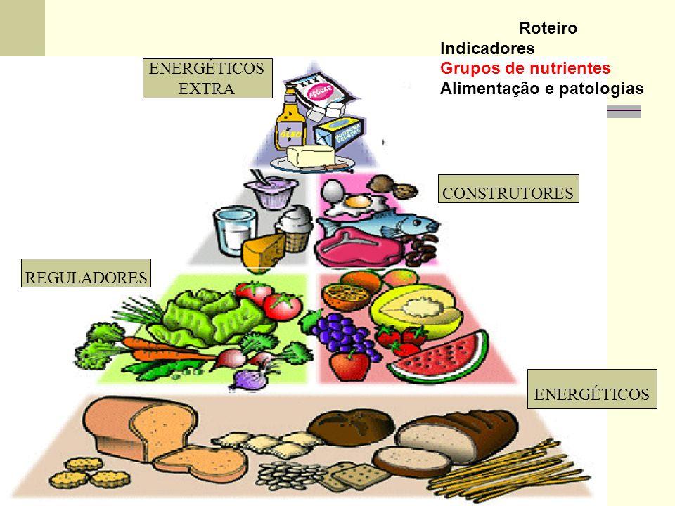 Roteiro Indicadores. Grupos de nutrientes. Alimentação e patologias. ENERGÉTICOS. EXTRA. CONSTRUTORES.