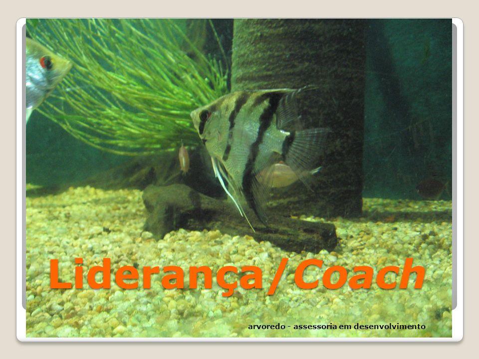 Liderança/Coach arvoredo - assessoria em desenvolvimento