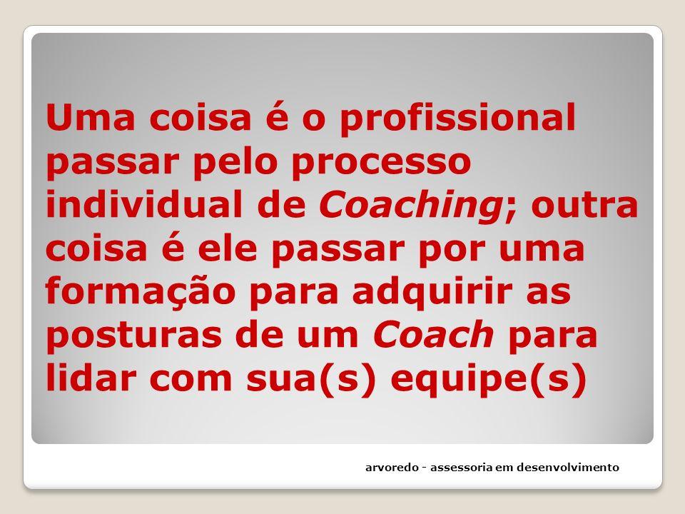 Uma coisa é o profissional passar pelo processo individual de Coaching; outra coisa é ele passar por uma formação para adquirir as posturas de um Coach para lidar com sua(s) equipe(s)