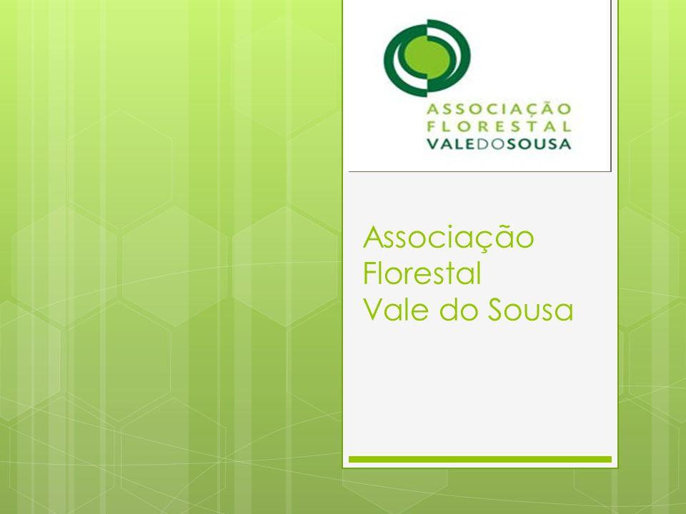 Associação Florestal Vale do Sousa