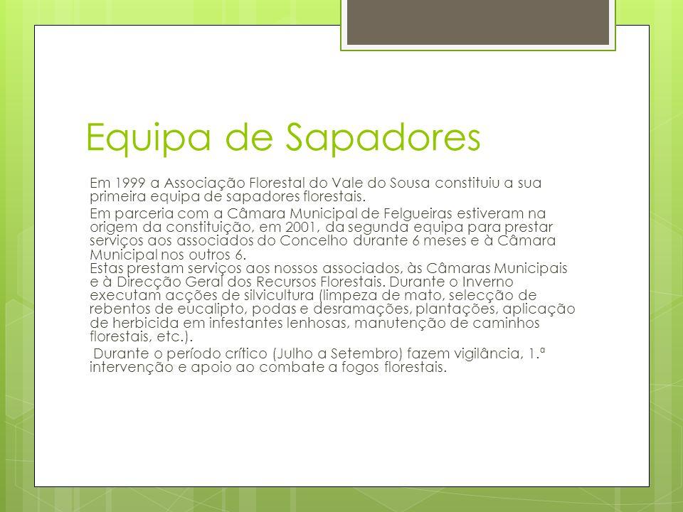 Equipa de Sapadores