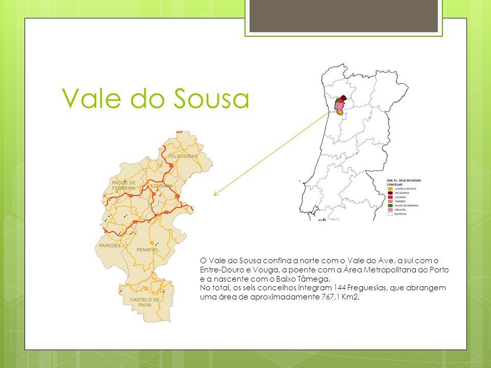 Vale do Sousa