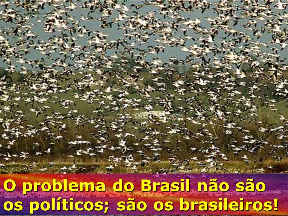 O problema do Brasil não são os políticos; são os brasileiros!
