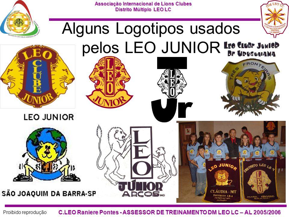 Alguns Logotipos usados pelos LEO JUNIOR