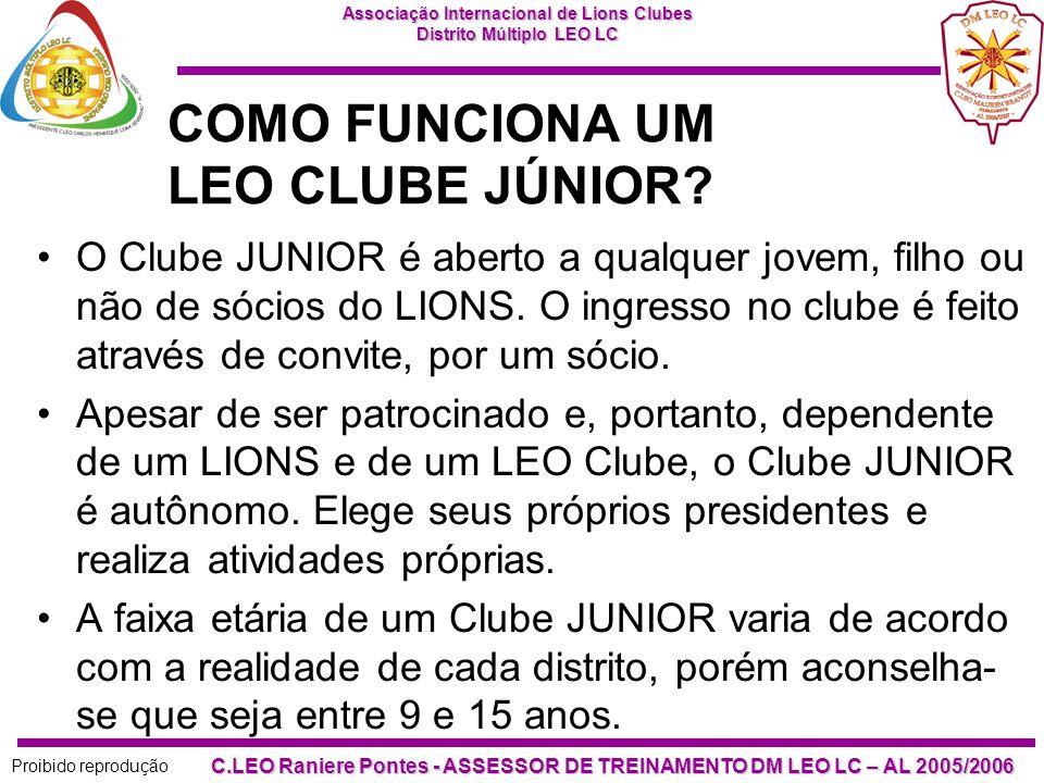 COMO FUNCIONA UM LEO CLUBE JÚNIOR