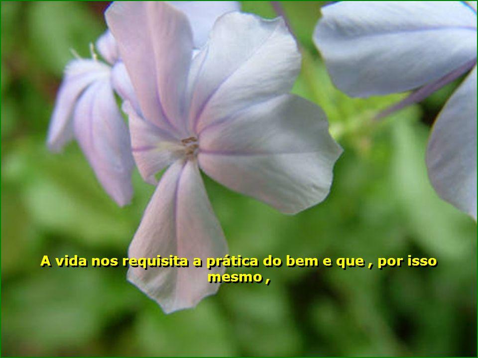 A vida nos requisita a prática do bem e que , por isso mesmo ,
