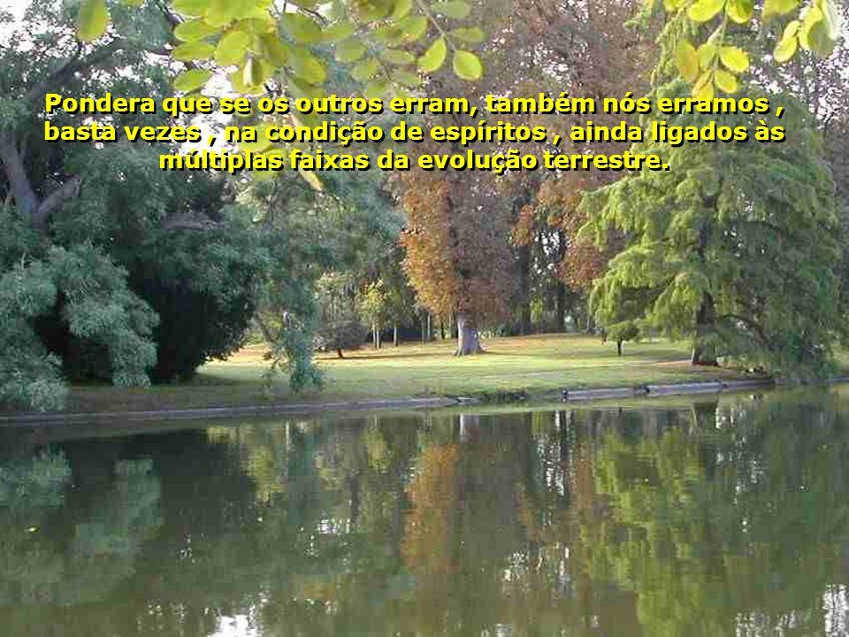 Pondera que se os outros erram, também nós erramos , basta vezes , na condição de espíritos , ainda ligados às múltiplas faixas da evolução terrestre.