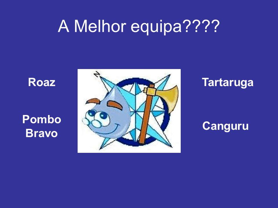 A Melhor equipa Roaz Tartaruga Pombo Bravo Canguru