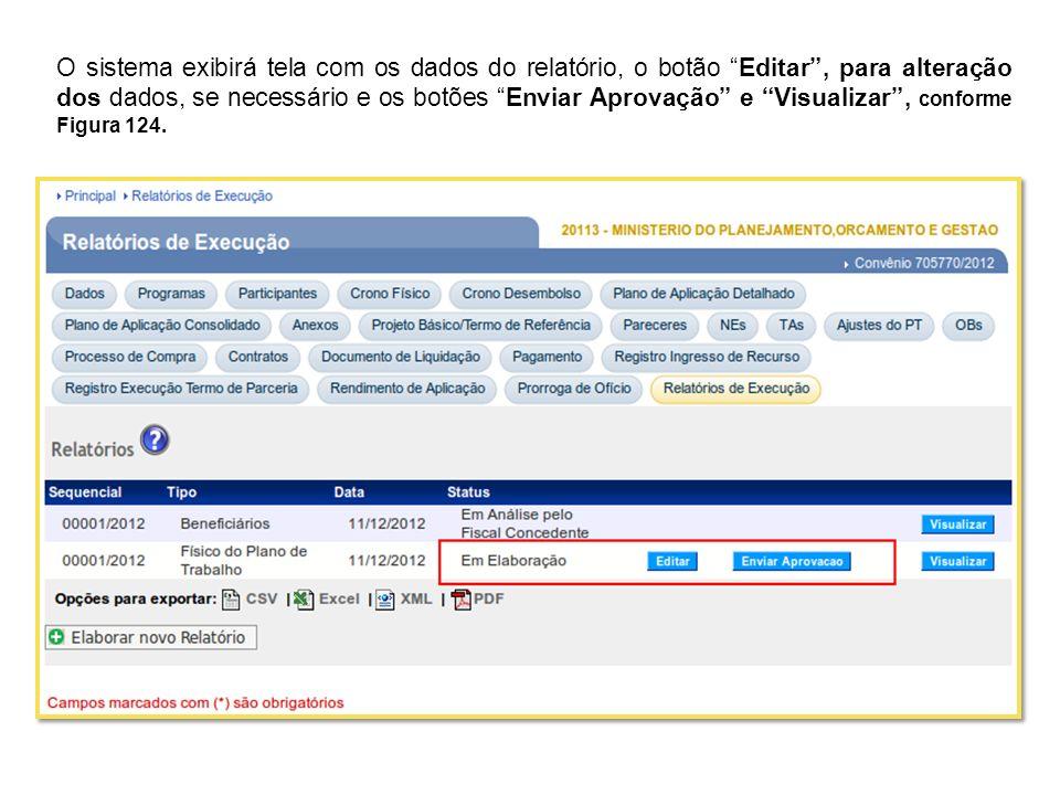 O sistema exibirá tela com os dados do relatório, o botão Editar , para alteração dos dados, se necessário e os botões Enviar Aprovação e Visualizar , conforme Figura 124.