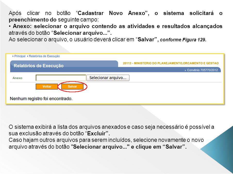 Após clicar no botão Cadastrar Novo Anexo , o sistema solicitará o preenchimento do seguinte campo: