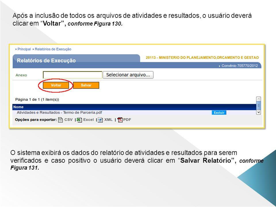 Após a inclusão de todos os arquivos de atividades e resultados, o usuário deverá clicar em Voltar , conforme Figura 130.