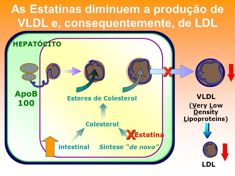 As Estatinas diminuem a produção de VLDL e, consequentemente, de LDL