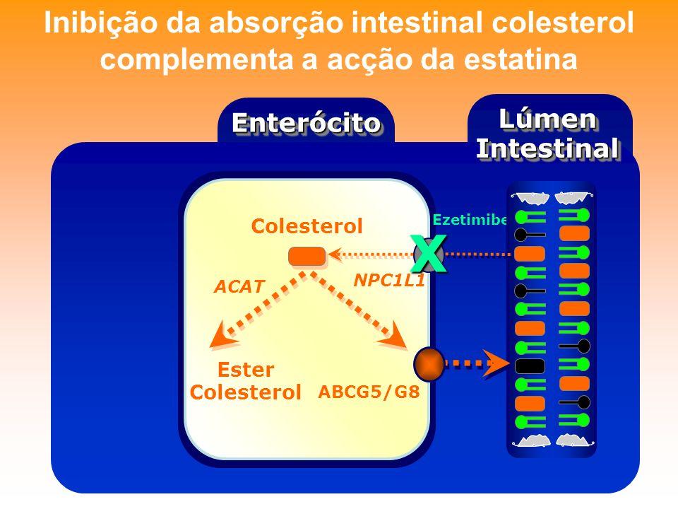 Inibição da absorção intestinal colesterol complementa a acção da estatina