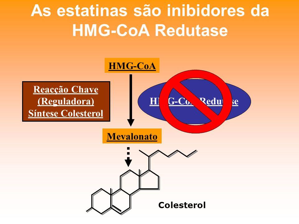 As estatinas são inibidores da HMG-CoA Redutase