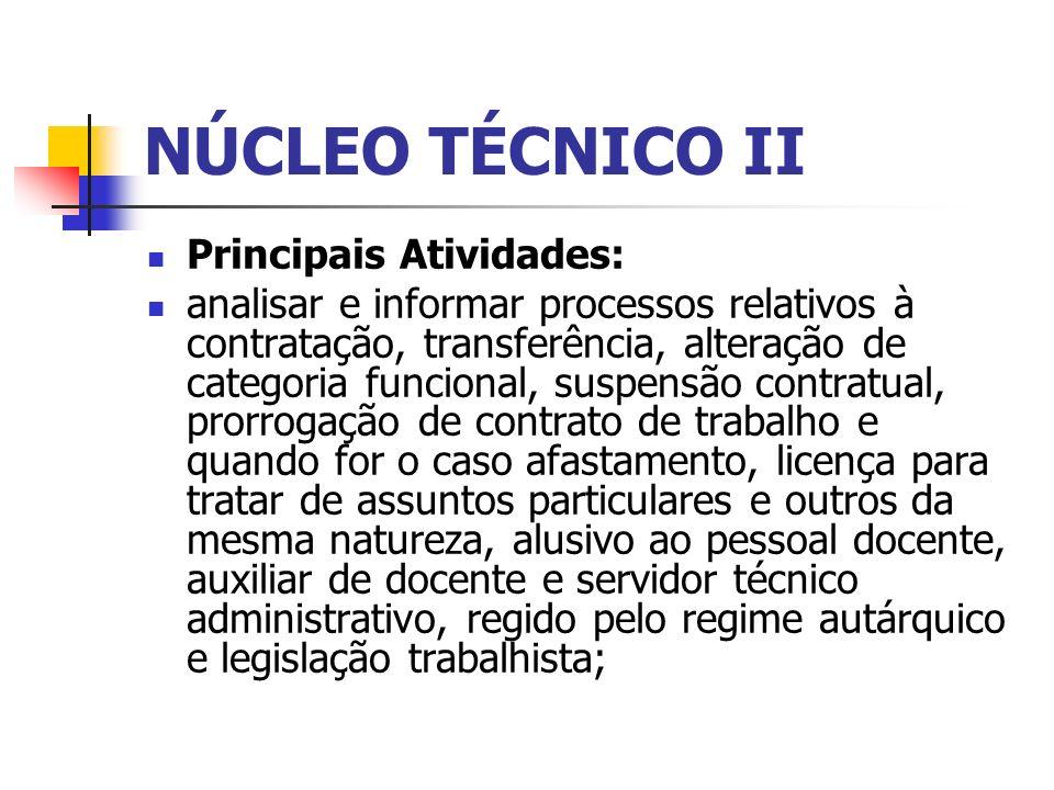 NÚCLEO TÉCNICO II Principais Atividades: