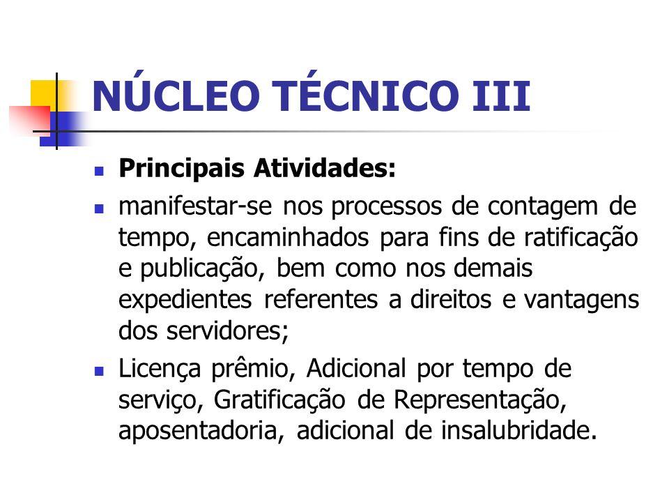 NÚCLEO TÉCNICO III Principais Atividades: