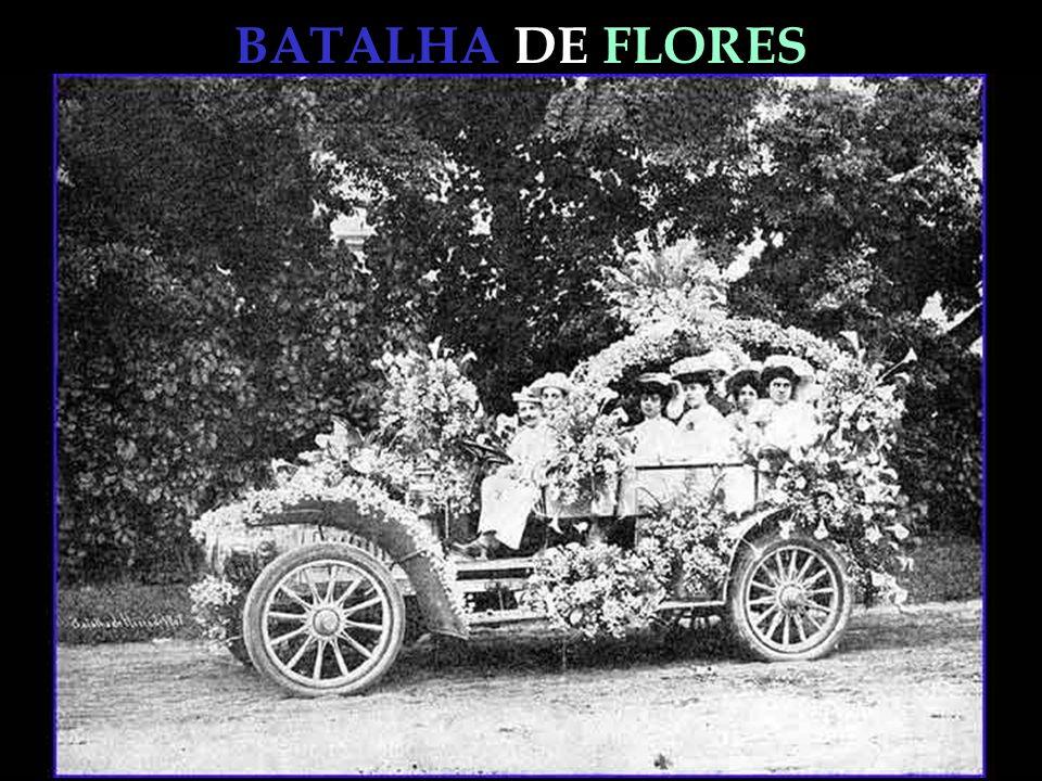 BATALHA DE FLORES PROTECIONISMO