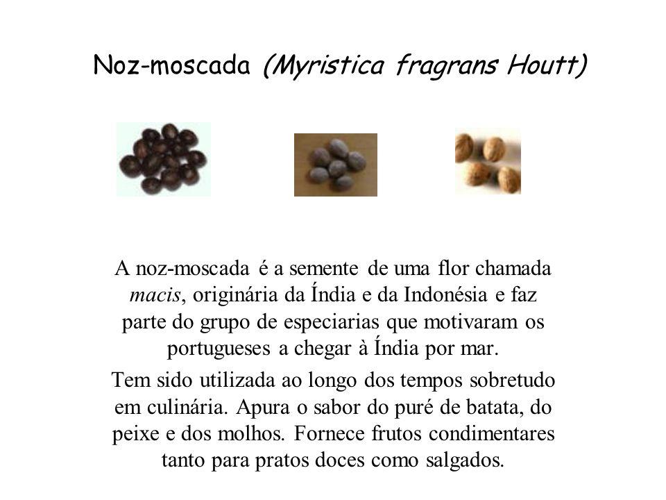 Noz-moscada (Myristica fragrans Houtt)