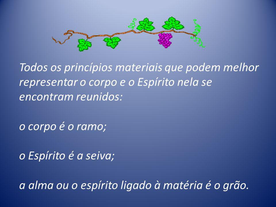 Todos os princípios materiais que podem melhor representar o corpo e o Espírito nela se encontram reunidos: