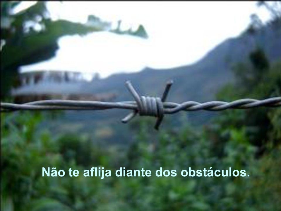 Não te aflija diante dos obstáculos.