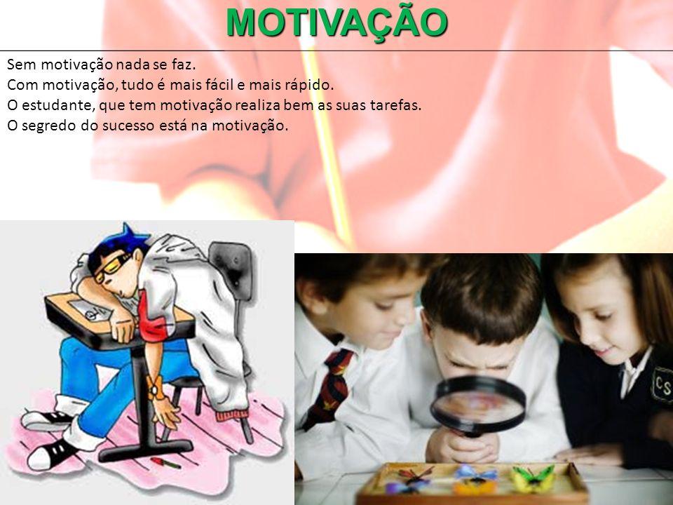 MOTIVAÇÃO Sem motivação nada se faz.