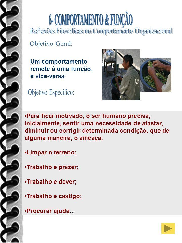 Objetivo Geral: Objetivo Específico: 6- COMPORTAMENTO & FUNÇÃO