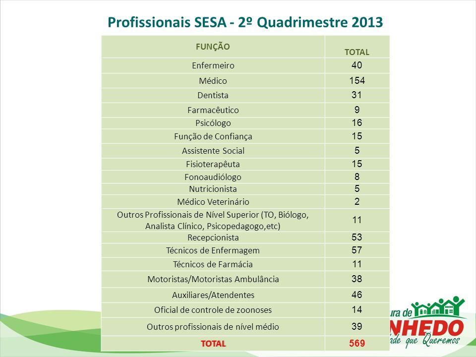 Profissionais SESA - 2º Quadrimestre 2013