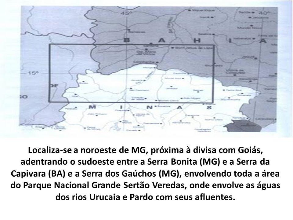 Localiza-se a noroeste de MG, próxima à divisa com Goiás, adentrando o sudoeste entre a Serra Bonita (MG) e a Serra da Capivara (BA) e a Serra dos Gaúchos (MG), envolvendo toda a área do Parque Nacional Grande Sertão Veredas, onde envolve as águas dos rios Urucaia e Pardo com seus afluentes.