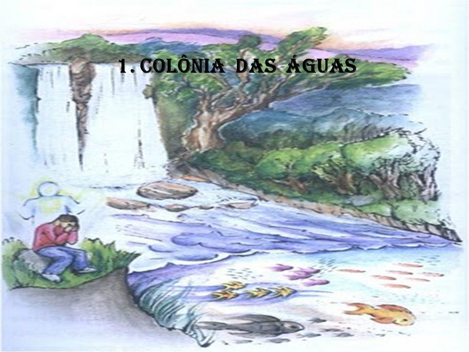 1. COLÔNIA DAS ÁGUAS