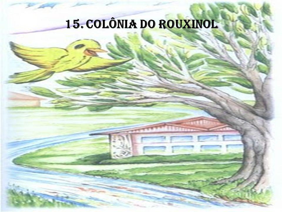 15. COLÔNIA DO ROUXINOL